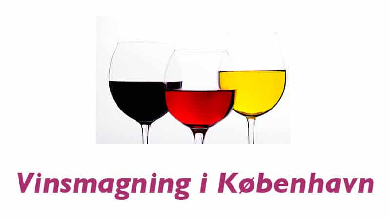 Vinsmagning København