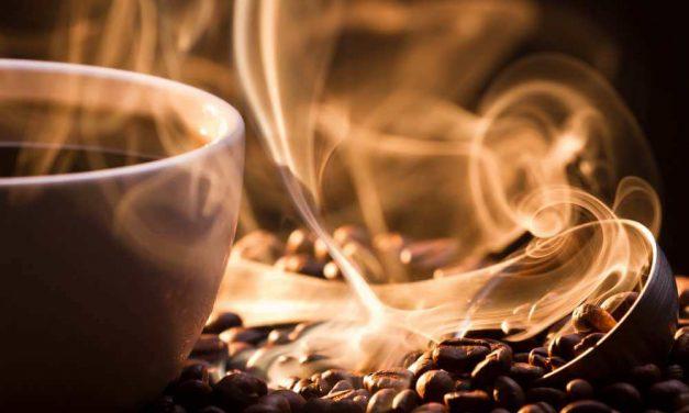 Kaffesmagning i København